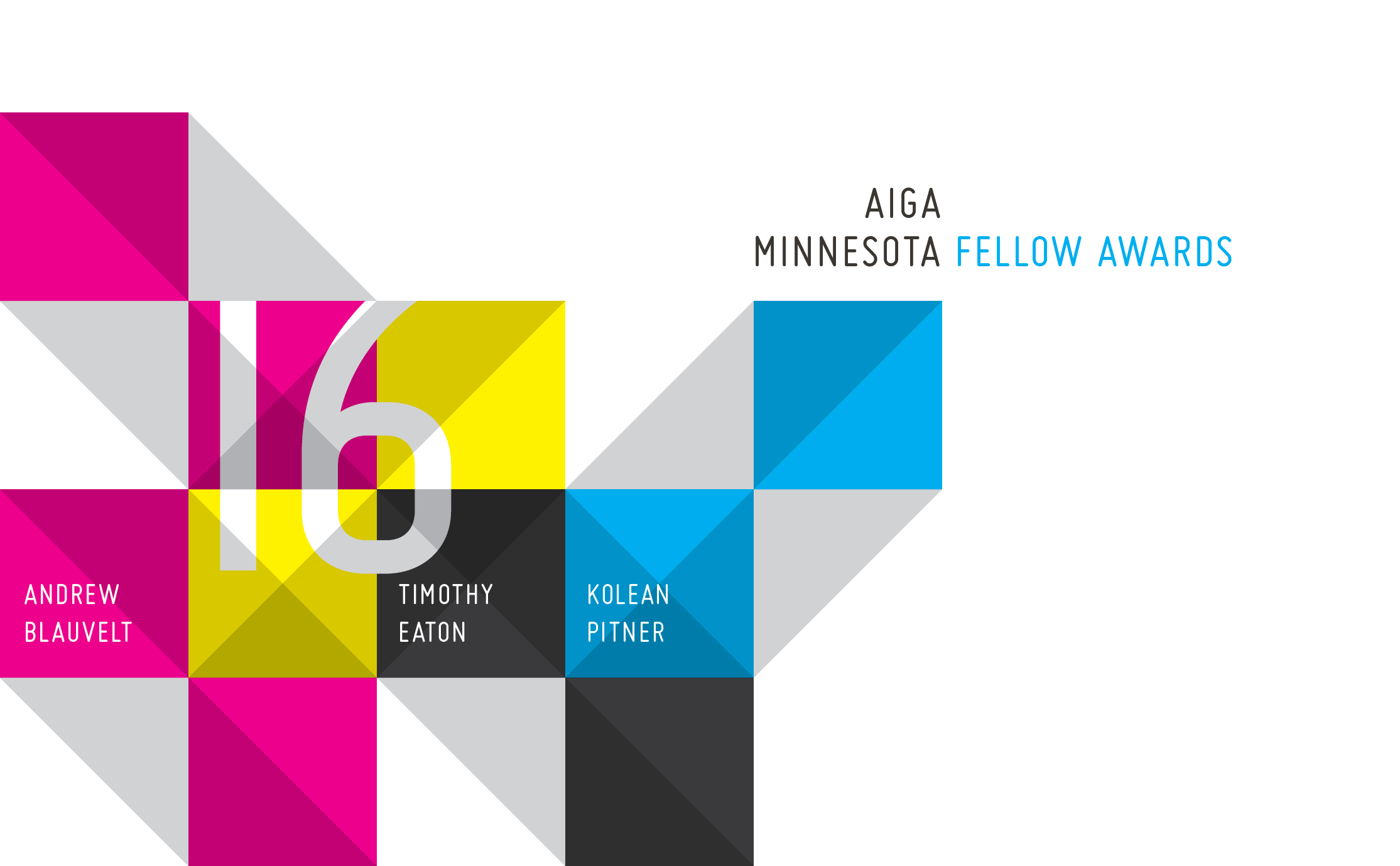 Web_Graphic_2016 AIGA Fellows-01